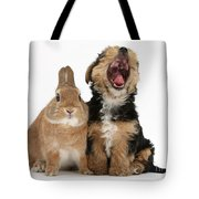 Yorkshire Terrier Pup With Rabbit Tote Bag