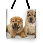 Young Dogs Tote Bag by Jane Burton