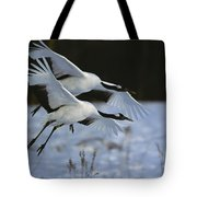A Pair Of Japanese Or Red-crowned Tote Bag