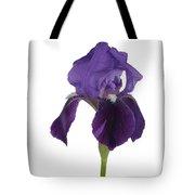 Blue Iris Blooming Tote Bag