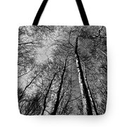 Epping Forest Trees Tote Bag