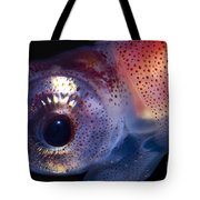 Firefly Squid Tote Bag