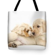 Puppy And Guinea Pig Tote Bag by Mark Taylor