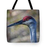 10- Sandhill Crane Tote Bag