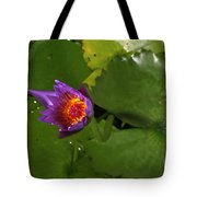 Waterlily Opening Part Of A Series Tote Bag