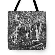 Ambresbury Banks Tote Bag