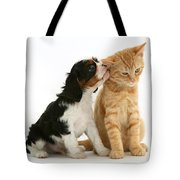 Puppy And Kitten Tote Bag by Jane Burton
