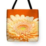 1523-001 Tote Bag