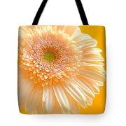 1527-002c Tote Bag