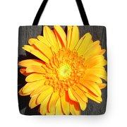 1599-001 Tote Bag