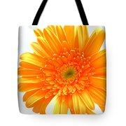1609-001 Tote Bag