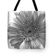 1609-002 Tote Bag