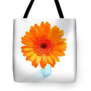1620c-001 Tote Bag