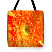 1628-001 Tote Bag