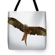 Red Kite In Flight Tote Bag