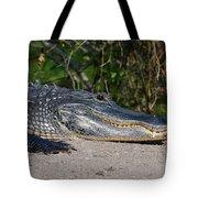 19- Alligator Tote Bag
