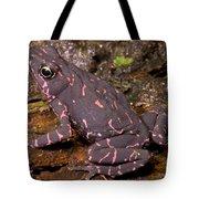 Harlequin Frog Tote Bag