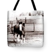 1900  Clydesdale Horse Tote Bag