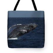 A Breaching Humpback Whale Tote Bag