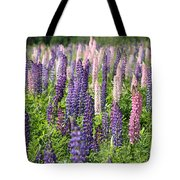 A Field Of Lupins Tote Bag