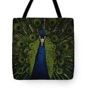 A Male Peacock Displays His Beautiful Tote Bag