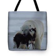 A Polar Bear Ursus Maritimus Tote Bag