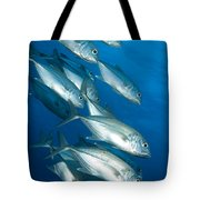 A School Of Bigeye Trevally, Papua New Tote Bag