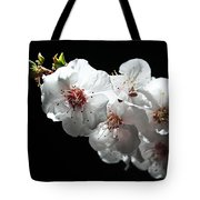 Apricot Flowers At Night Tote Bag