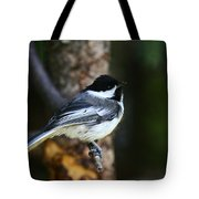 Blackcapped Chickadee Tote Bag