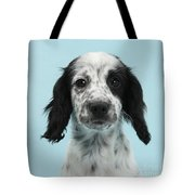 Border Collie X Cocker Spaniel Puppy Tote Bag
