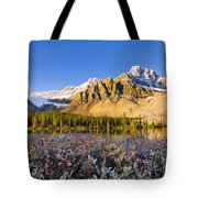 Bow Lake And Crowfoot Mountain Tote Bag