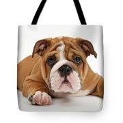 Bulldog Puppy Tote Bag
