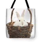 Bunny In A Basket Tote Bag