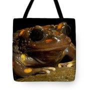 Chilean Mountains False Toad Tote Bag