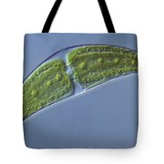 Closterium Sp. Algae Lm Tote Bag by M. I. Walker