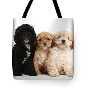 Cockerpoo Puppies Tote Bag