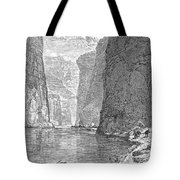 Colorado River Tote Bag