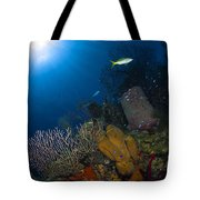 Coral And Sponge Reef, Belize Tote Bag