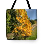 Country Road And Autumn Landscape Tote Bag