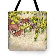 Deers Tote Bag by MotHaiBaPhoto Prints