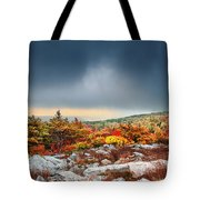 Dolly Sods Wilderness Tote Bag