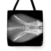 Eastern Diamondback Rattlesnake Head Tote Bag