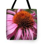 Echinacea Purpurea Or Purple Coneflower Tote Bag