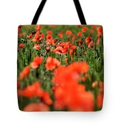 Field Of Poppies. Tote Bag