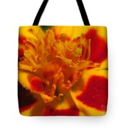 French Marigold Named Starfire Tote Bag