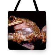 Fringe Limb Tree Frog Tote Bag