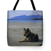 Gray Wolf On Beach Tote Bag