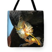 Harris Hawk Feeding Tote Bag