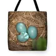 Hatching Robin Nestlings Tote Bag