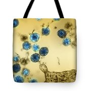Herpes Virus Hhv-6 Tote Bag